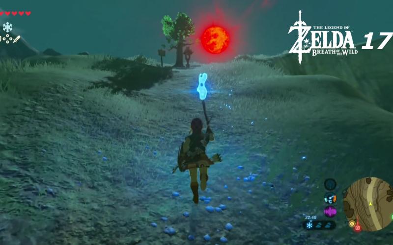 Lets Play Together The Legend Of Zelda Breath Wild Part 17